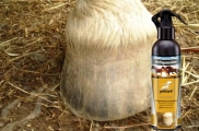 Hoof care for horses with hoof oil