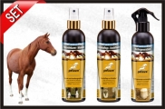 Hoof care and regeneration with inflammed hoof
