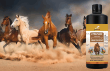 Horse shampoo for coat and mane