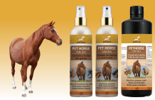 Horse shampoo, grooming and mane care
